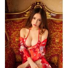 Sexy Lingerie Babydoll Bikini & Robes YW572